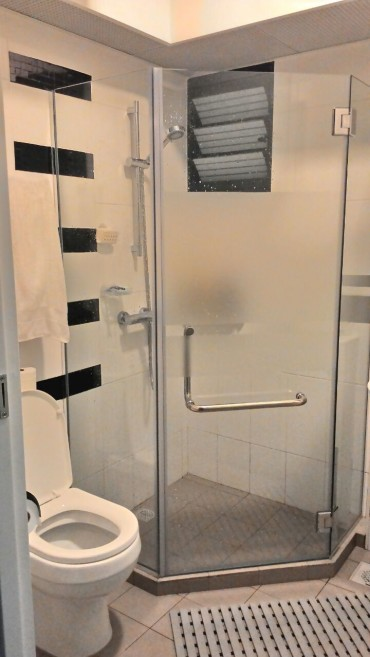Modern High Contrast Black & White Bathroom reno. Tempered Clear Glass swing door. Grohe.